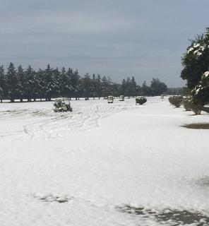 11月24日除雪.jpg