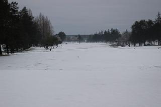 コース雪.JPG